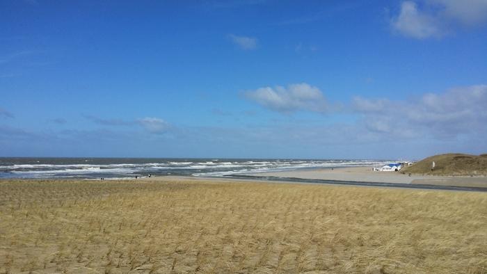 mooi wonen in de duinen