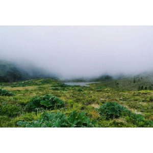 A mysterious foggy place between the mountains Do you seehellip