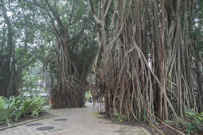 kuala lumpur city park klcc