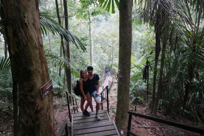aroundsan taman negara maleisie malaysia