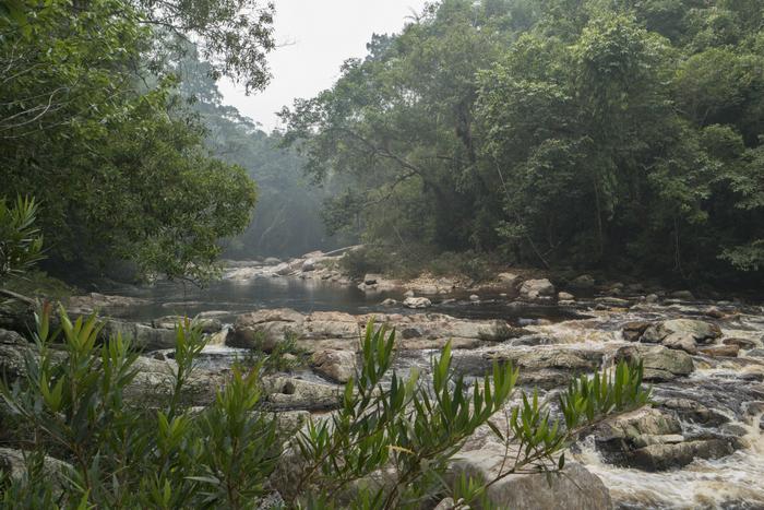 taman negara lata berkoh waterval waterfall