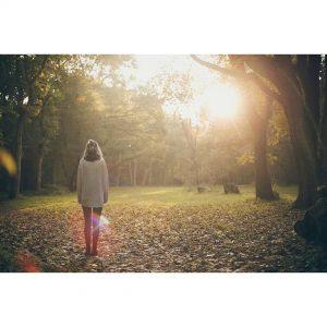 autumn fall blogger exploring adventure wanderlust woods forest instanature travelbloggerhellip