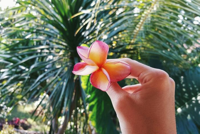 Minimalisme | Mijn visie & hoe ik dit toepas in mijn leven
