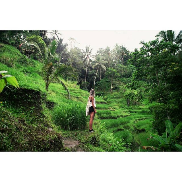 Exploring the Tegalalang rice terraces bali indonesia tegalalang ricepaddies sawahhellip