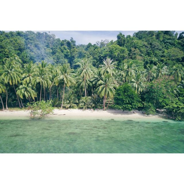 Just silence palm trees white sand small fast crabs coconutshellip
