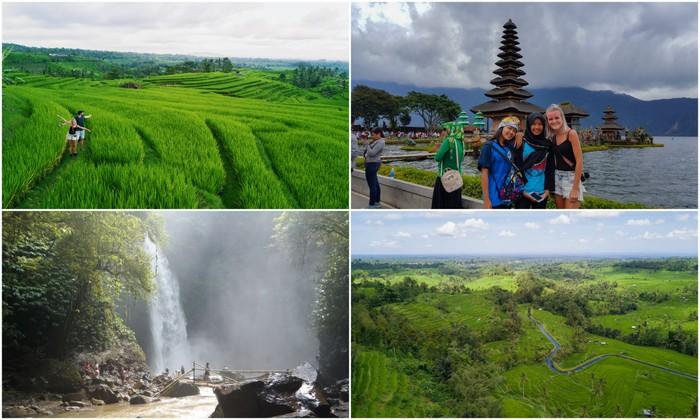 Bali | Jatiluwih rijstvelden, Nungnung waterval & Pura Ulun Danu Bratan tempel