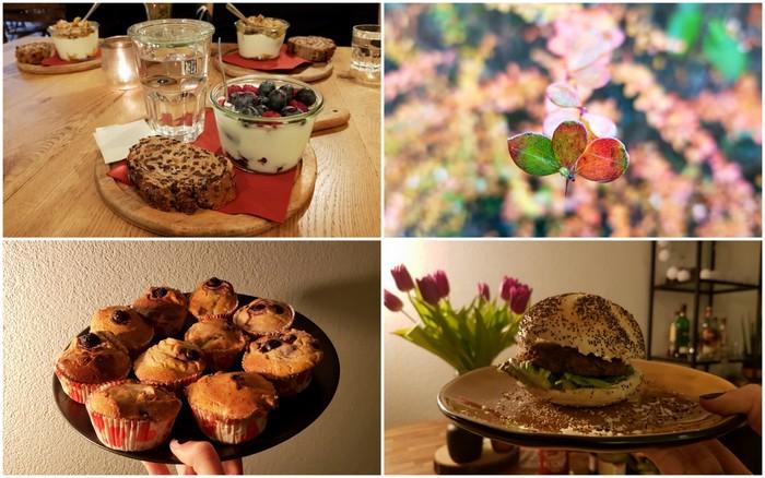 Photo Diary #131 | Yoghurt Barn, kwark muffins & verstand
