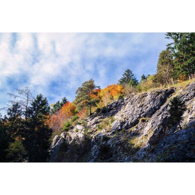 I wish I was here autumn austria wolfsklamm stans autumncolorshellip