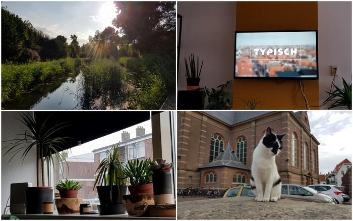 Photo Diary #166 | Typisch Katwijk, inslaan & vooral heel moe
