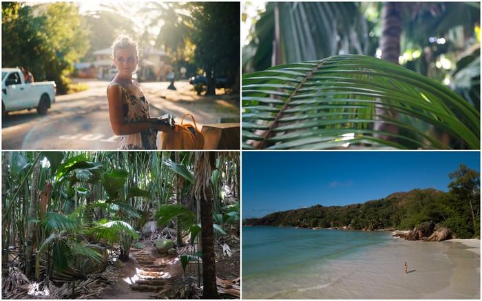 Seychellen | Praslin: Vallée de Mai, Anse Volbert & Anse Gouvernement