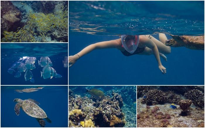 Travel | De magie van de onderwaterwereld