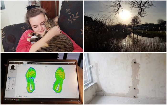 Photo Diary #190 | Keihard verbouwen, lentekriebels & loopanalyse