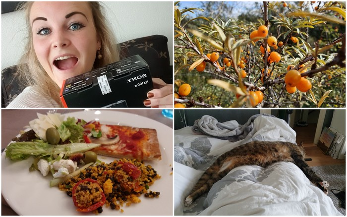 Photo diary #219 | Griep, herfst & nieuwe camera