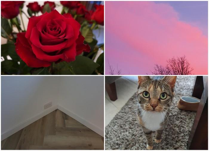 Photo Diary #234 | Thuis zijn, plinten & leeuwen kapsel