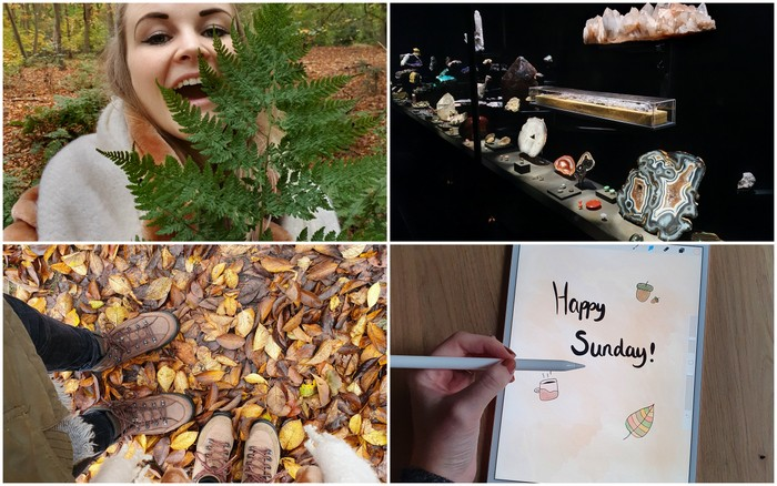 Photo Diary #260 | Herfstwandelingen, Naturalis & 'vakantie'